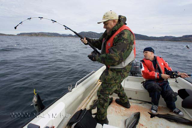 сколько стоит морская рыбалка в крыму