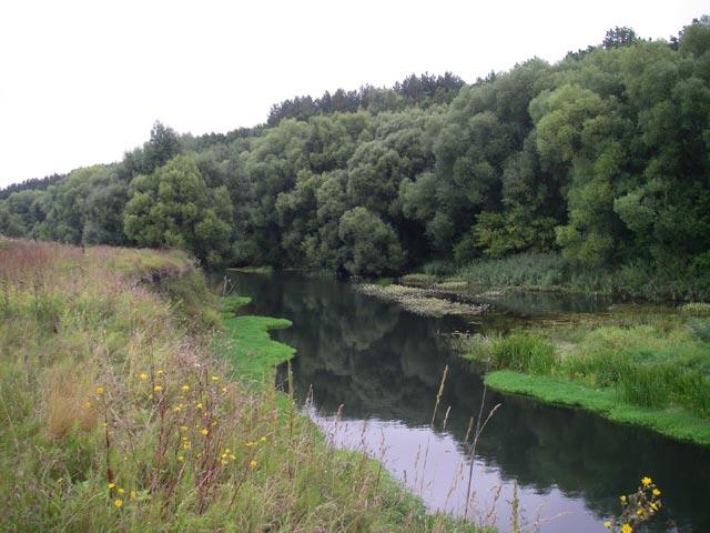 рыбалка на реке неручь